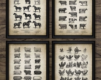 Vintage Farm Animals Print Set Of 4 - Farming Illustration - Chicken - Pig - Sheep - Horse - Cow - Set Of Four Prints #912 -INSTANT DOWNLOAD
