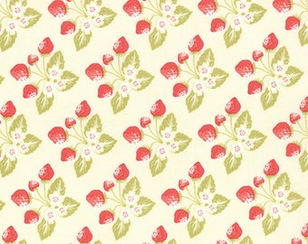 Strawberry Fields Revisited Fabric - One yard - Fig Tree & Co. - Moda Fabrics  - Stock No. 20264-14