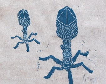 T4 Bacteriophage science art, Limited Edition hand-pulled linocut print