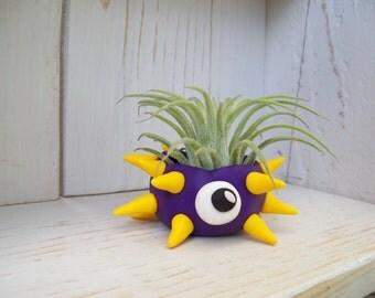 Air Planter - Spiny Monster
