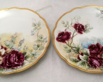 2 Antique Austrian Hand Painted Rose Porcelain Plates