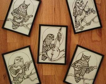 5 piece Bluegrass Owl Series Set. 5x7inch Framed Art Prints.