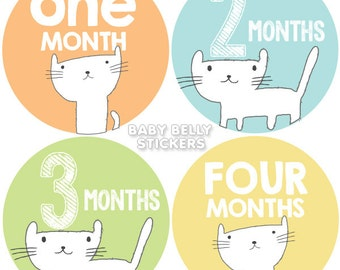 Baby Month Stickers, Monthly Baby Stickers, Monthly Milestone Stickers, Baby Monthly Stickers, Baby Belly Stickers, Cat Boys