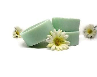 Handmade Shampoo Bar, Travel Bar, Vegan Shampoo, Natural Shampoo, Natural Hair Care