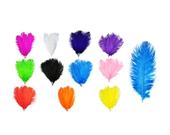 Mandala Crafts® 17 to 19 Inches Dyed Plumes Wholesale Ostrich Feathers, 5 PCs