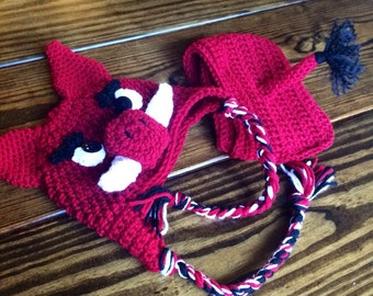 Arkansas Razorbacks inspired  hogs MADE TO ORDER hat and diaper cover sizes newborn to 12 months football costumes photo props, Halloween