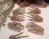 Skeleton Hand Clip for Costume Hair Hat or Prop