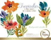 Tropicolor,  Watercolor, Clipart, PNG, hand painted, hawaiian party, for invitations, blog, cards, quotes, prints,