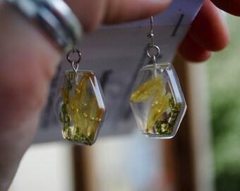 Wildflower Hexagon Earrings~