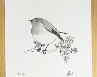 Little Robin Sketch - Print