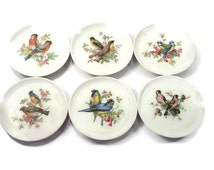 Set of Six Decorative Collector Bird Coasters - E&R Golden Crown China, Schumann Arzberg Germany Bavaria 1950's - Bird Plates
