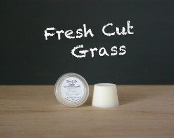 Fresh Cut Grass Soy Shot 20g x 1