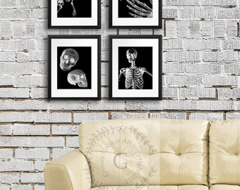 Human Anatomy Skeleton Halloween Wall Decor set of 4 Spooky Halloween Decoration Ideas, Goth Halloween Decor, Skeleton Wall Art, Skull Art