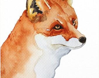 fox original watercolor painting  fox painting Woodland painting fox art 24x32cm (9,4x12,6in)