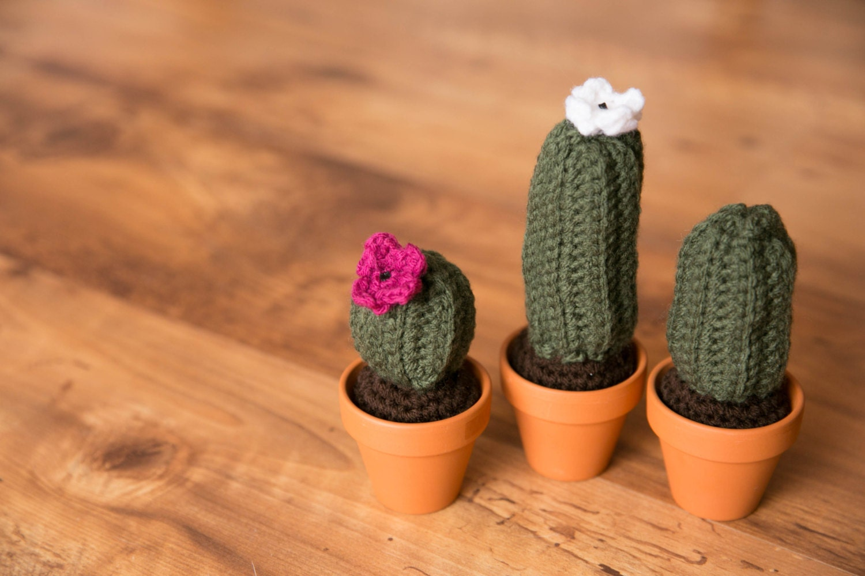 Tecnica Amigurumi Cactus : Crochet Cactus Crochet Cactus Amigurumi Mini Cactus Cactus