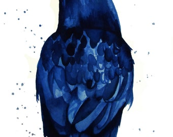 BLUE RAVEN - Digital Copy
