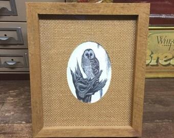 Vintage Owl Wildlife Artist Florida Bill Wesling Florida