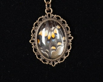 Real Eastern Tiger Butterfly Wing Pendant