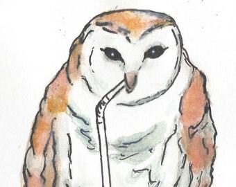 Barn Owl Owl-a-holic