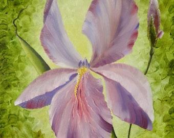 "Oil Painting Flowers - Iris - Flower Painting Art Original Painting On Canvas ""12 x 16"" (30cm x 40cm)"