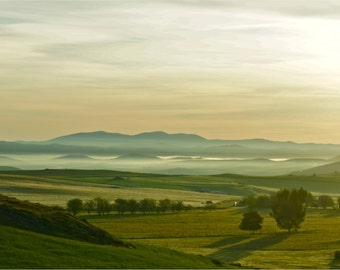 Portugal Photography, Fine Art Photography,  Large Wall Art, Neutral Wall Art, Landscape, Countryside, Dawn, Soft Colors, Green - The Valley