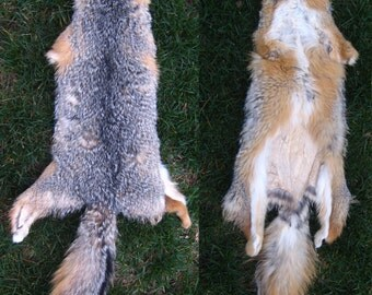 Tanned Grey Fox Pelt