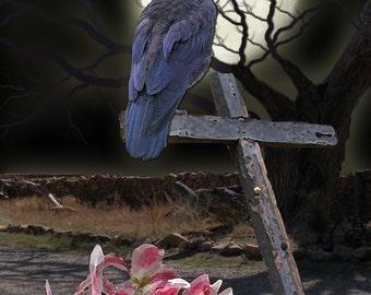 Raven Cross