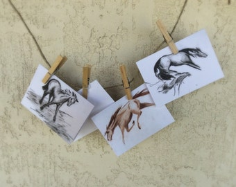 Charcoal Blank Greeting Cards by RBrashears