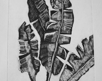 Banana Leaf Monoprint - One-off Print