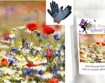 Wild Flower Seeds, Meadow Mix, ONLY FLOWERS - 40 g English Native Meadow
