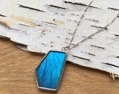 GEO Blue Butterfly Necklace, real blue morpho wing preserved under glass, geometric shape, asymmetry