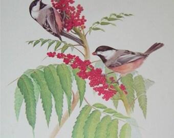 Raven Bird Print Severt Andrewson 11521 Scriptural Scripture