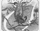 Vintage LyreBird graphic Lyre Bird Image digital download GreatMusings No.0047