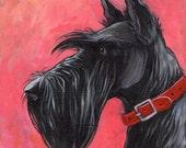 Black Scottish Terrier original acrylic painting