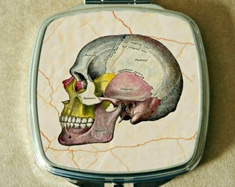 COMPACT MIRROR with Medical Skull Chart, Diagram, Phrenology, Laboratory, Silver Tone Metal, Double Mirrors, Lightweight, Can Be Customized