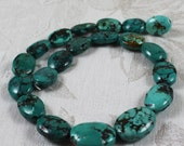 Strand of 20 Graduated Oval Turquoise Beads