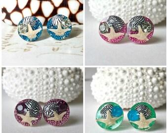 Tiny Beach Studs, Real Starfish Studs, Tiny Seashell Earrings, Resin Studs, Mermaid Earrings, Sea Star Earrings:  Set 4
