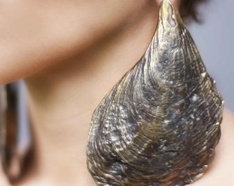 Oyster Shell Earrings - Ear Weights - Stretched Lobes