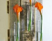 Glass Beaker Wall piece, rustic decor, glass bud holder, flower vase, country home, kitchen, bathroom, bedroom