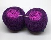 Purple is a Fruit gradient sock yarn set