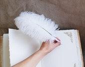Wedding pen, Guest Book pen, White feather pen, White Ostrich Feather Pen, Rustic wedding guest book pen, wedding feather decor,  gift idea
