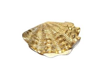 Brass Clam Shell Brass Clam Box LARGE Clam Shell Hampton Brass Seashell Brass Clam Trinket Box Nautical Decor, Beach Decor