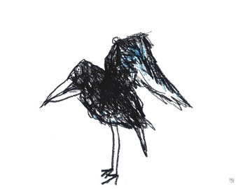 Charcoal crow raven illustration black bird drawing with a tinge of teal in his wings