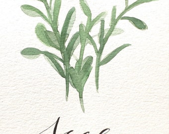 "Sage Herb print- Watercolor and Calligraphy- 5""x7"" HOLIDAY SALE 20% off"