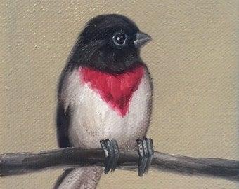 Original Oil Painting Tiny Grosbeak