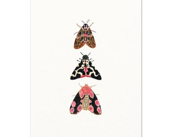 Moth Watercolor Art Print. Pink Moth Illustration. Unique Insect Nature Art. Modern Kids Room Decor. Baby Shower Gift. Nature Wall Art Print