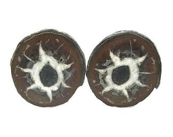 Septarian Ironstone Calcite Nodule Polished Gem Stone Palm Pocket Talisman aka Dragon Stone Natural Organic Concretion Wear it or Display it