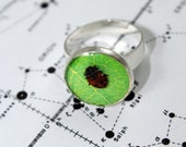 Real Lady Bug Ring