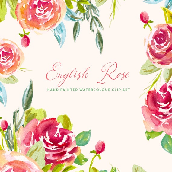 clipart english rose - photo #19
