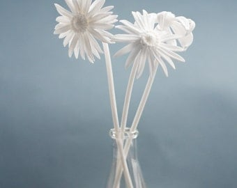 3D Printed Nylon Daisies, Set of 3- Perfect for Display and Gifting